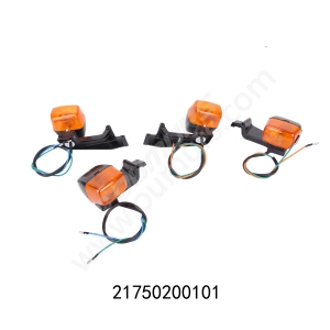 REAR TURN SIGNAL LAMP, LH&RH-BROSS125
